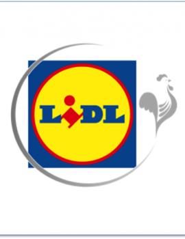 LIDL – Journée Team-Building